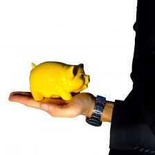 yellow-piggy-bank